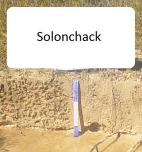 Solonchack